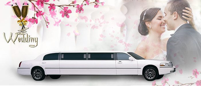 Wedding Services for A-1 Limos